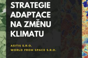 Strategie_adaptace-350x495[1]