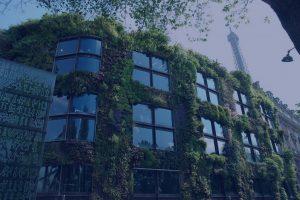 Strategie adaptace na klimatickou změnu